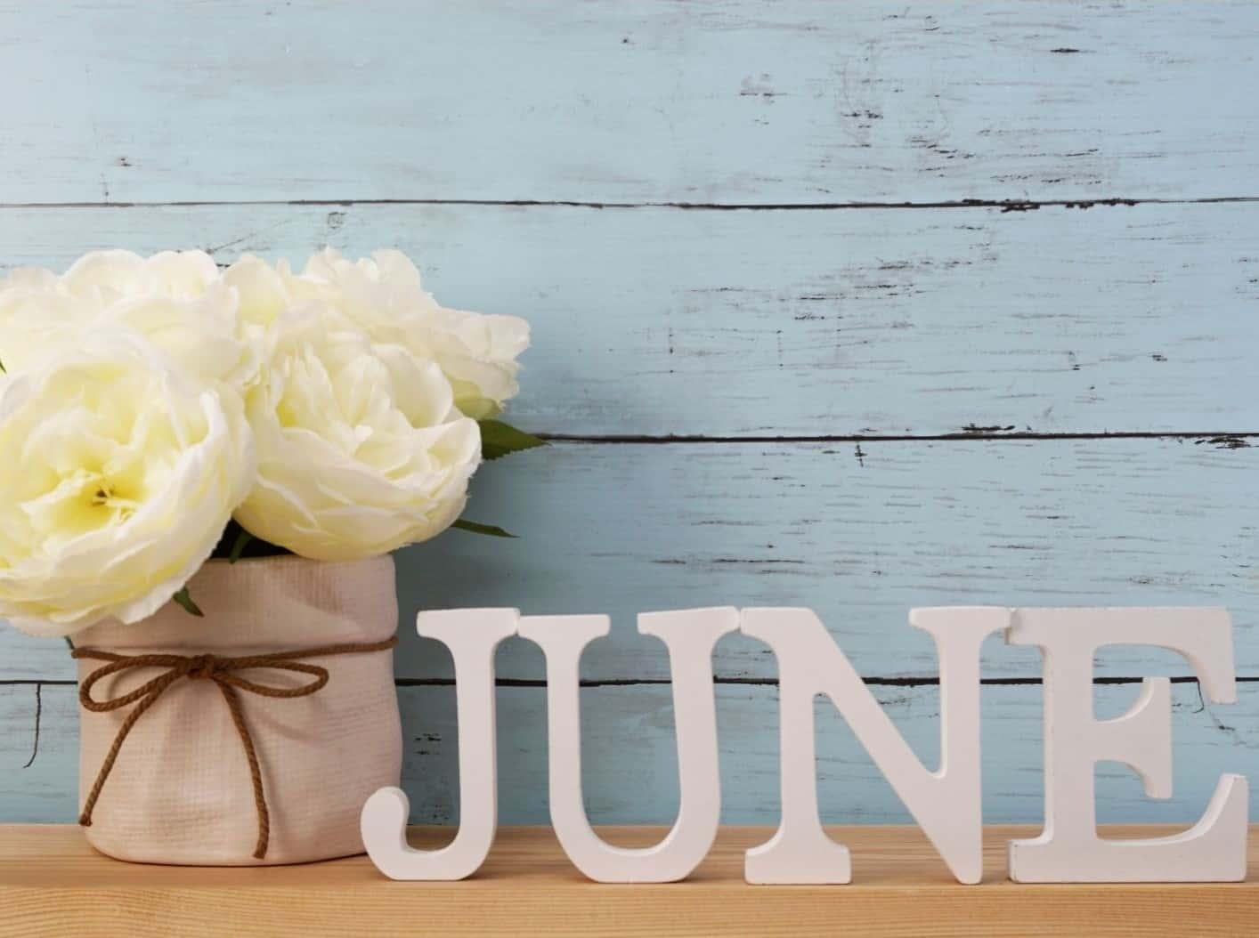 June Roundup and Financials
